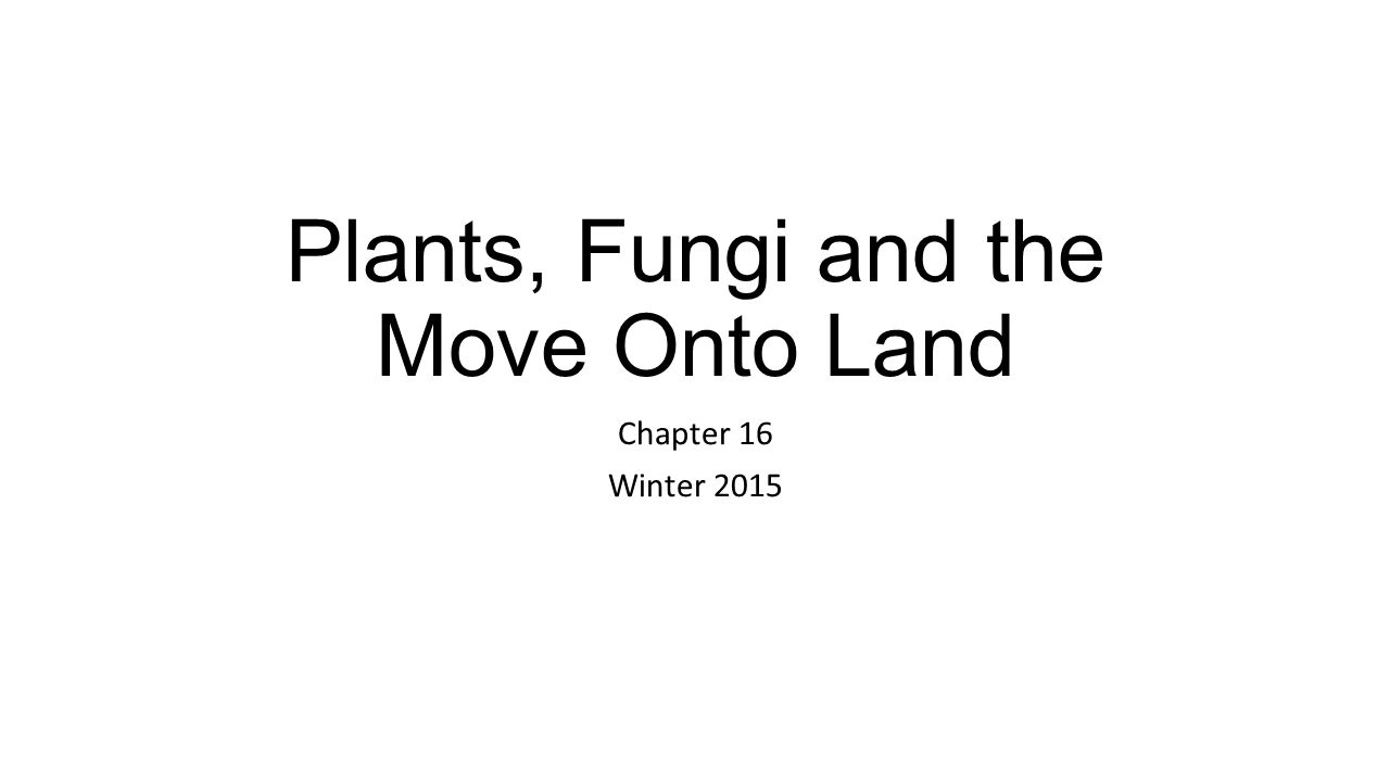 Plants, Fungi and the Move Onto Land