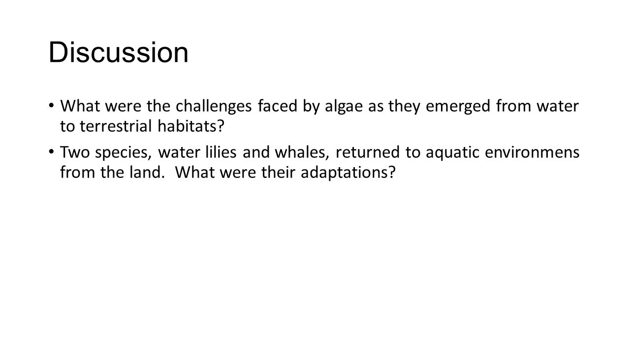 Discussion What were the challenges faced by algae as they emerged from water to terrestrial habitats