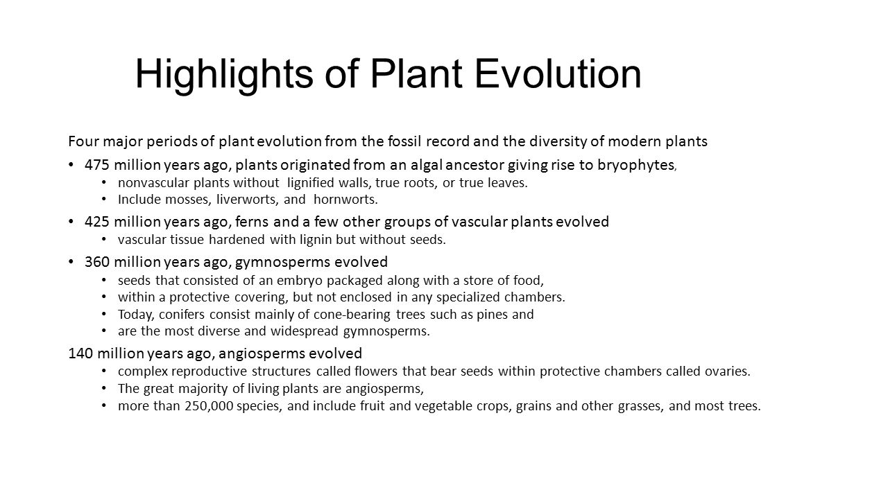 Highlights of Plant Evolution