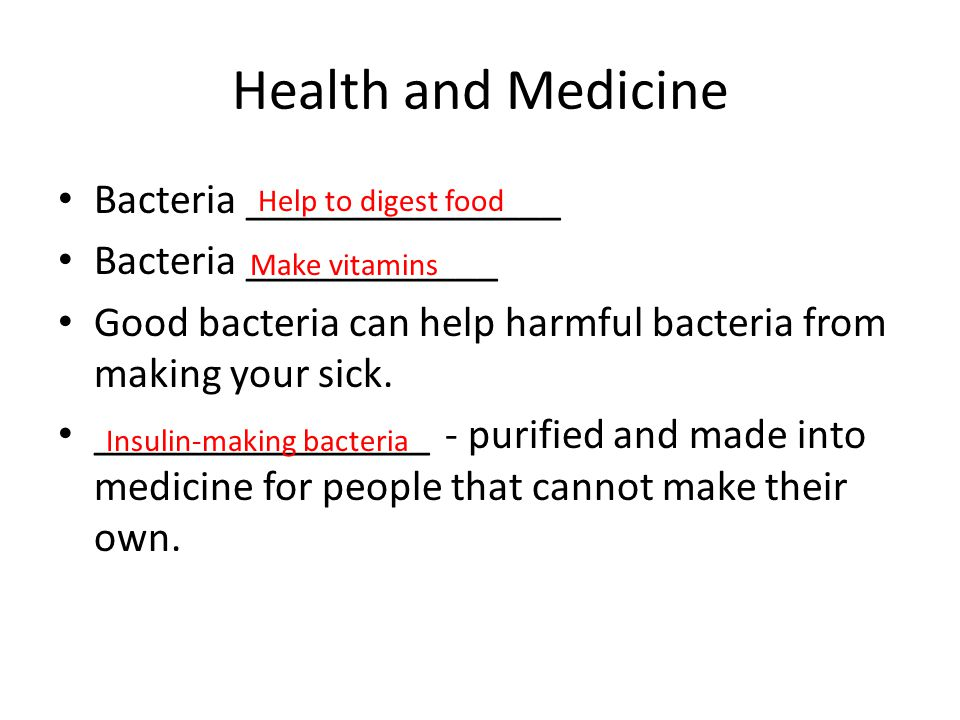 Health and Medicine Bacteria _______________ Bacteria ____________