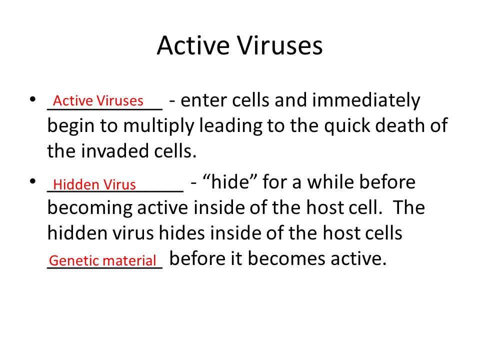 Active Viruses ___________ - enter cells and immediately begin to multiply leading to the quick death of the invaded cells.