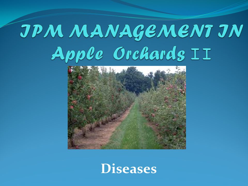 IPM MANAGEMENT IN Apple Orchards II