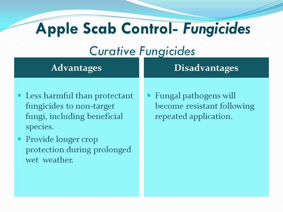 Apple Scab Control- Fungicides Curative Fungicides