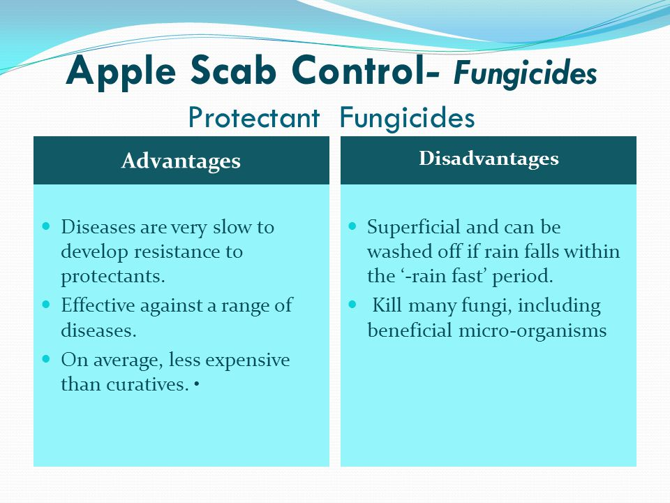 Apple Scab Control- Fungicides Protectant Fungicides