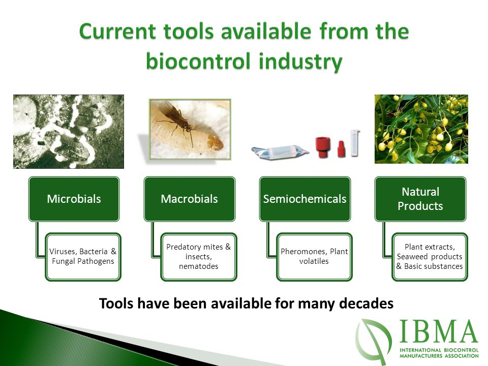 Current tools available from the biocontrol industry