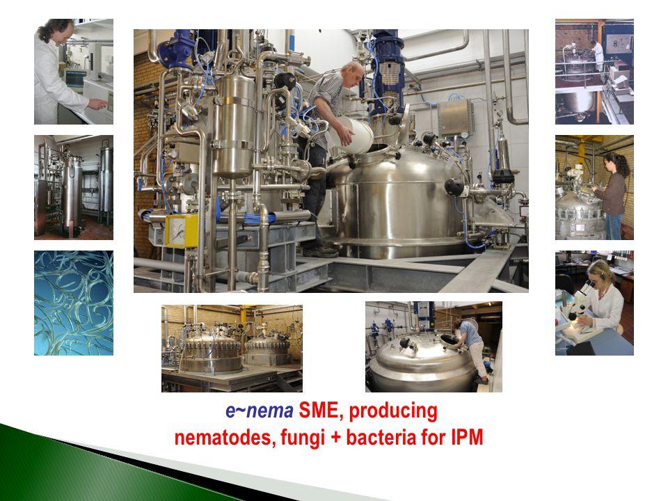 nematodes, fungi + bacteria for IPM