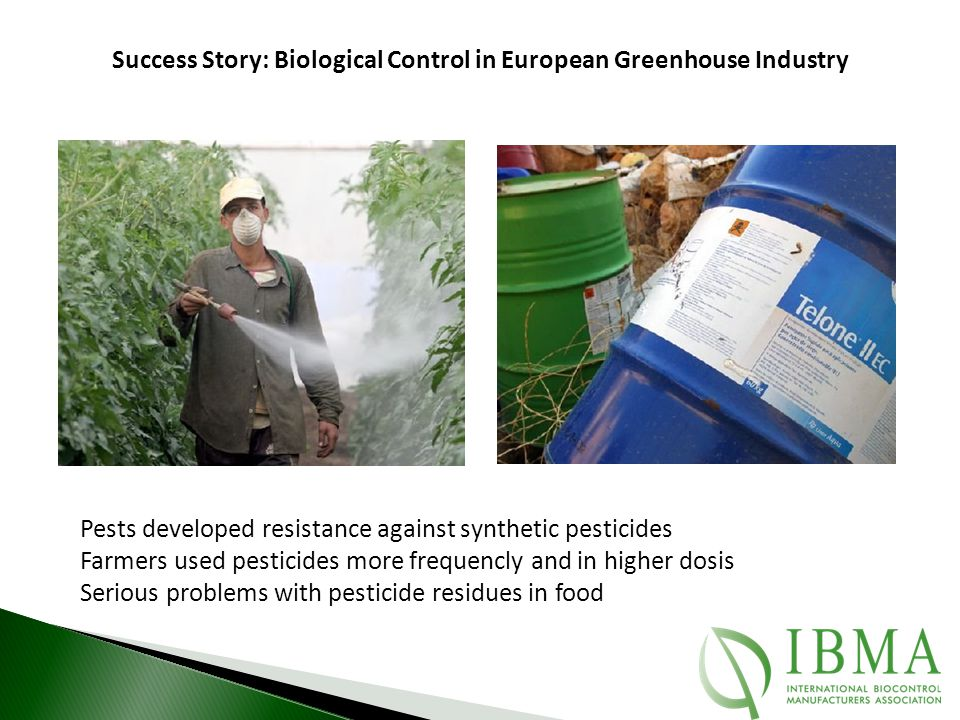 Success Story: Biological Control in European Greenhouse Industry