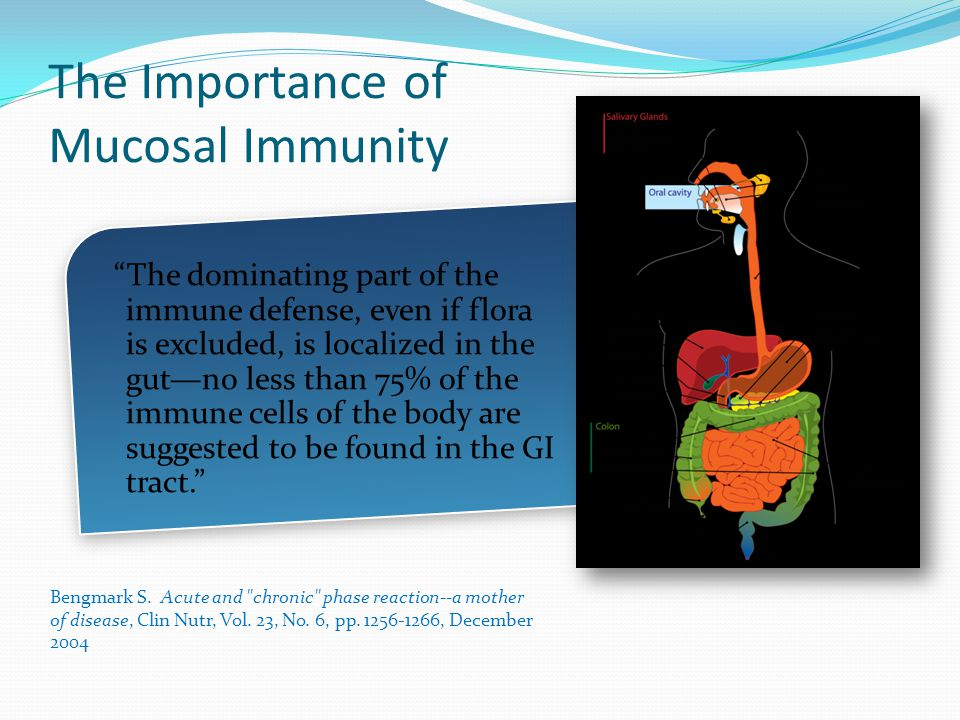 The Gi Tract Clinical Insights From Stool Urine And