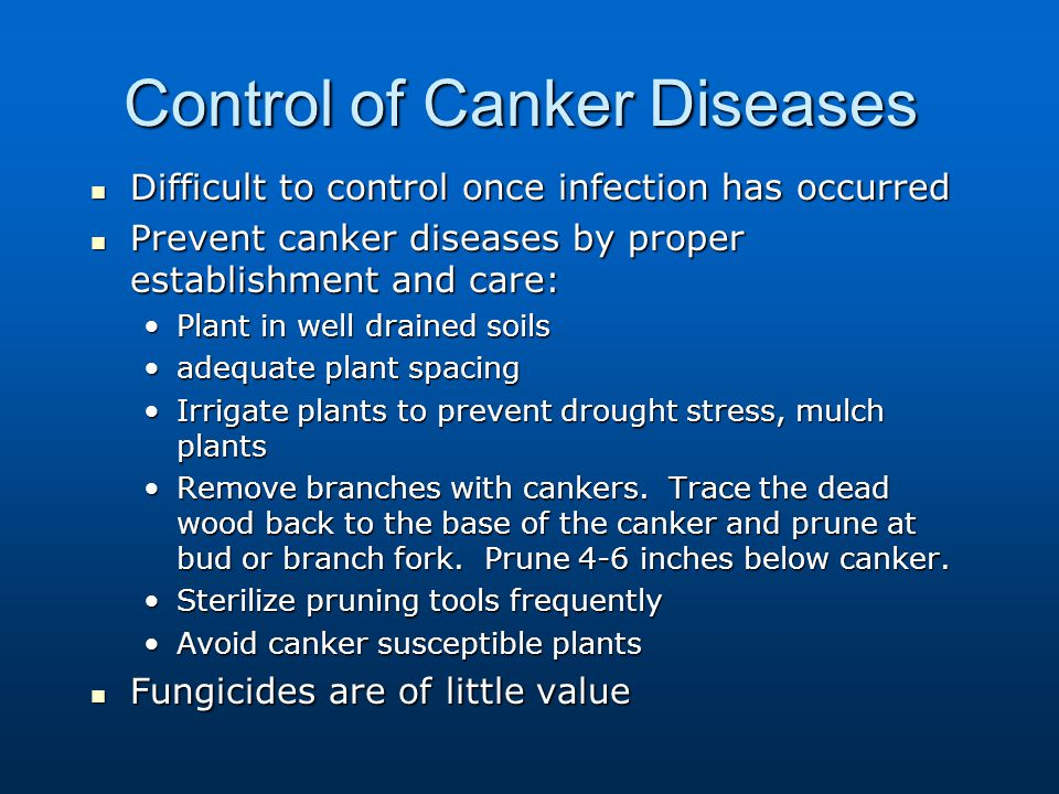 Control of Canker Diseases