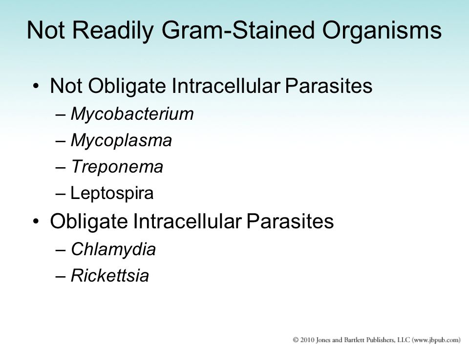Not Readily Gram-Stained Organisms