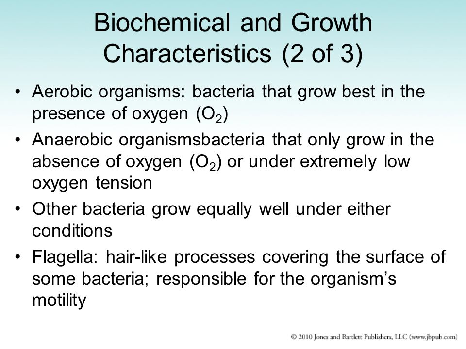 growth characteristics of bacteriophage Many but not all cases the growth of phage leads finally to a lysis of the bacterial   one step growth curve of phage on rapidly dividing bacteria at 37 ° direct.