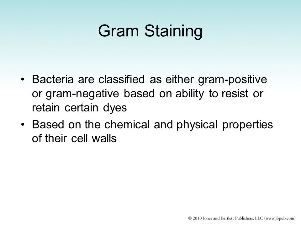 Gram Staining Bacteria are classified as either gram-positive or gram-negative based on ability to resist or retain certain dyes.