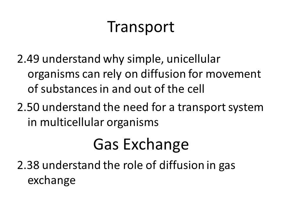 Transport Gas Exchange