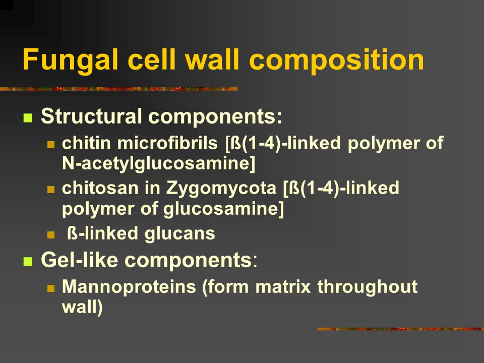 Fungal cell wall composition