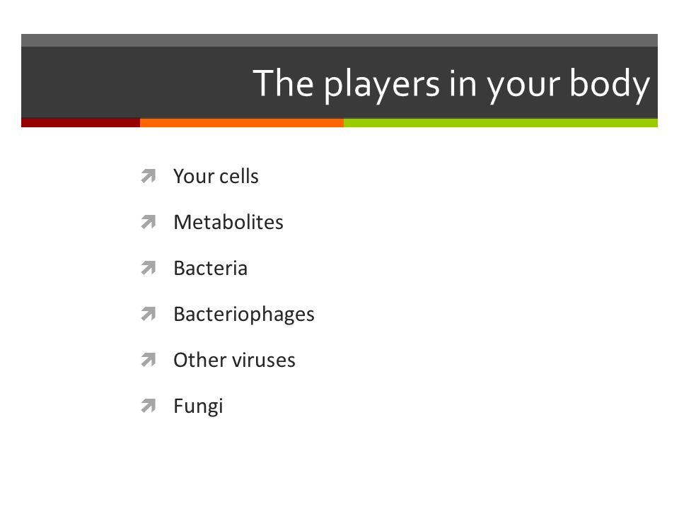 The players in your body