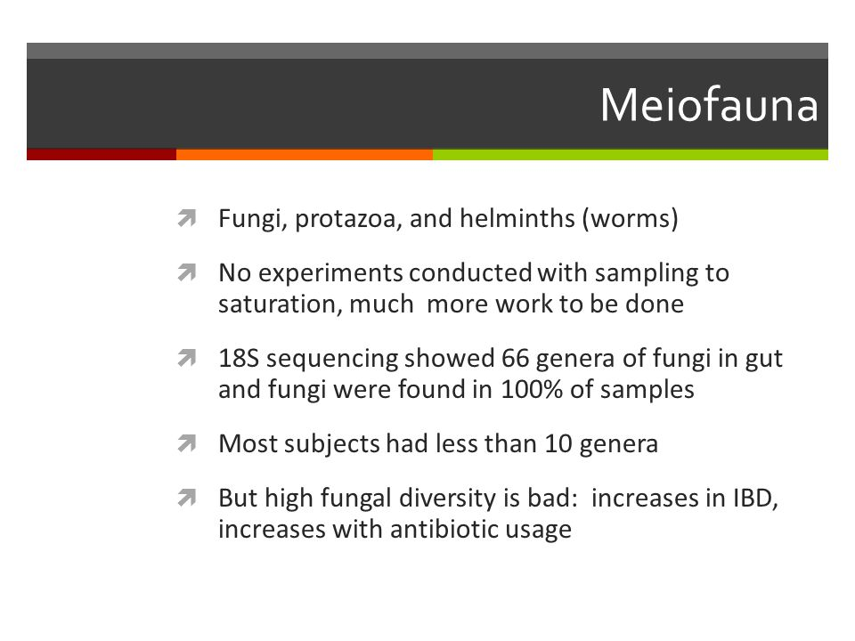 Meiofauna Fungi, protazoa, and helminths (worms)