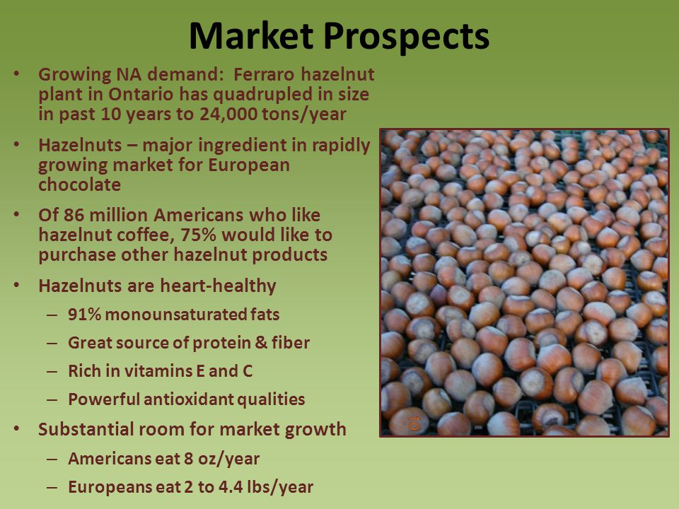 Market Prospects Growing NA demand: Ferraro hazelnut plant in Ontario has quadrupled in size in past 10 years to 24,000 tons/year.