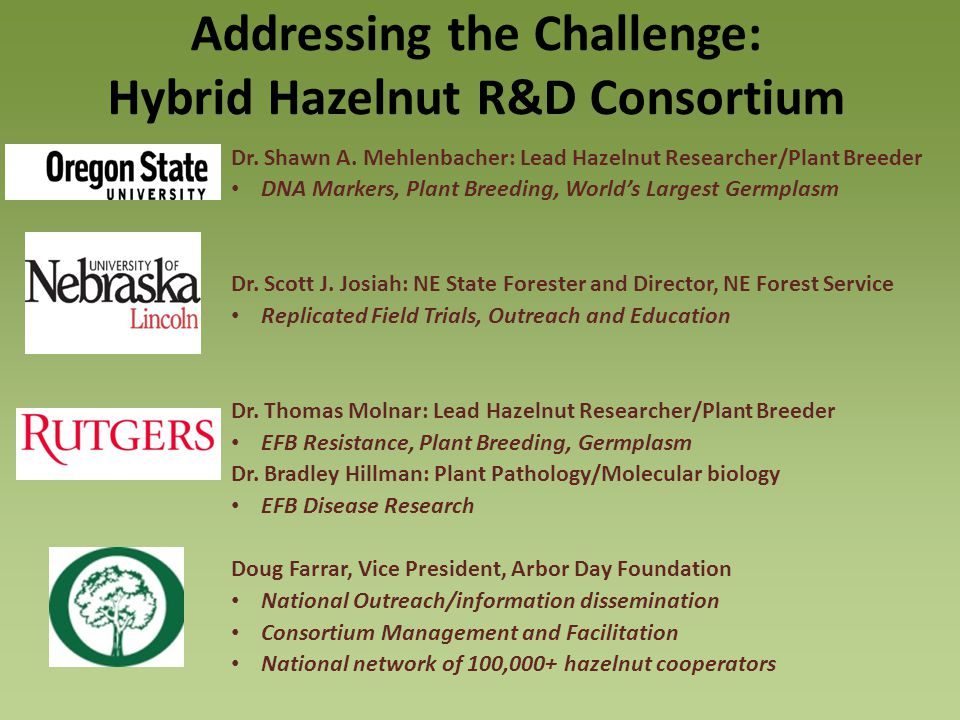 Addressing the Challenge: Hybrid Hazelnut R&D Consortium