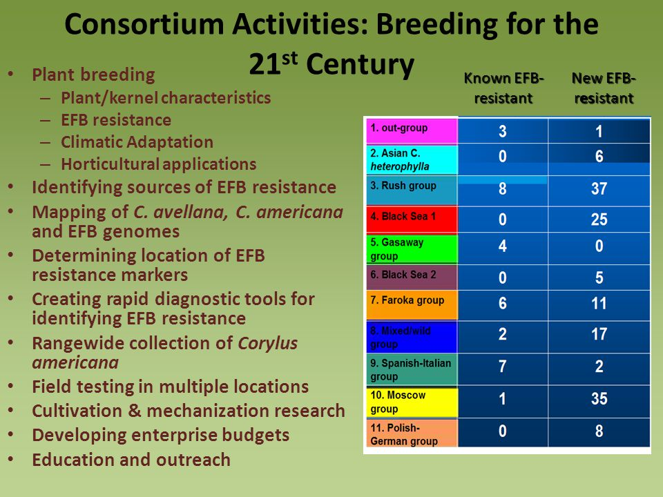 Consortium Activities: Breeding for the 21st Century