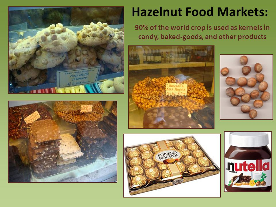 Hazelnut Food Markets: