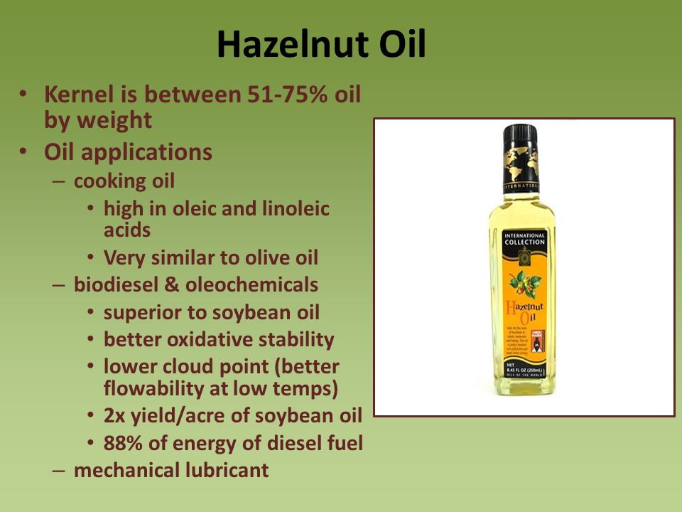 Hazelnut Oil Kernel is between 51-75% oil by weight Oil applications