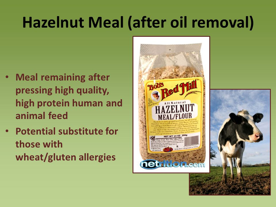 Hazelnut Meal (after oil removal)