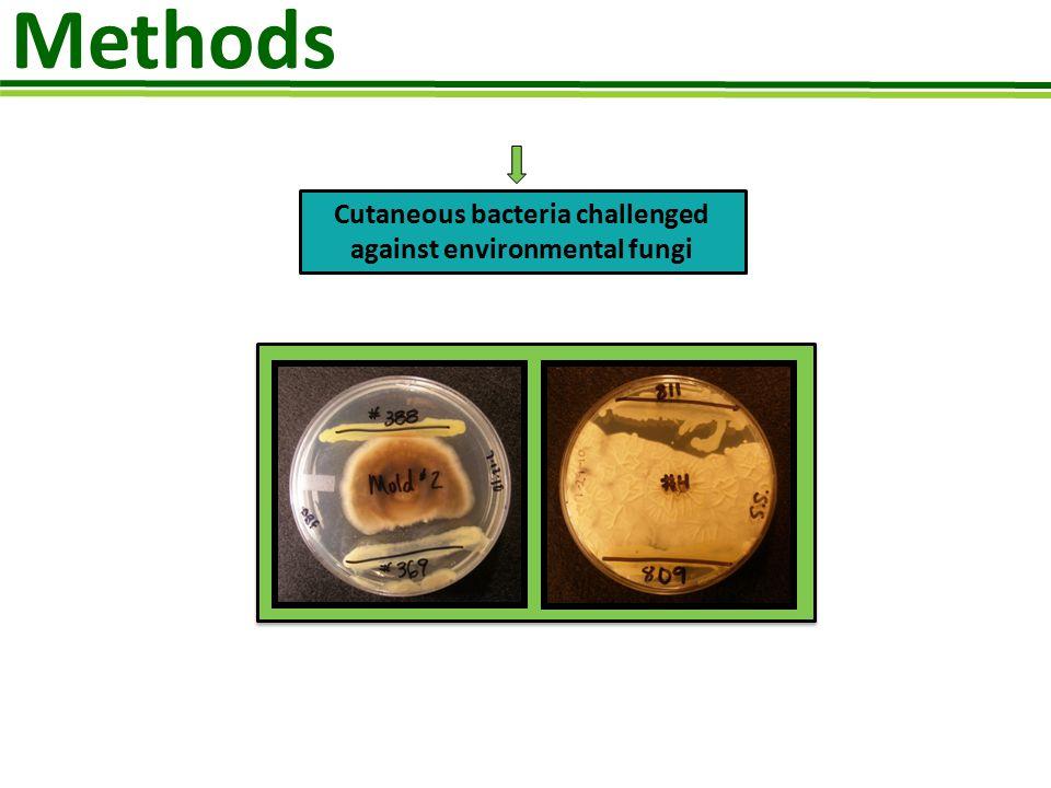 Cutaneous bacteria challenged against environmental fungi