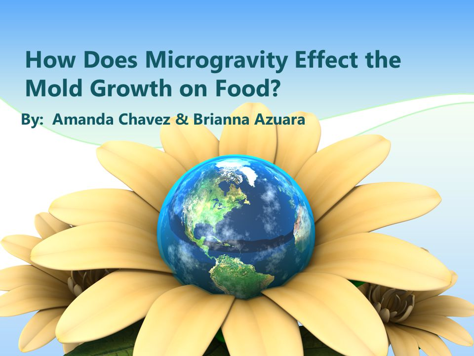 How Does Microgravity Effect the Mold Growth on Food