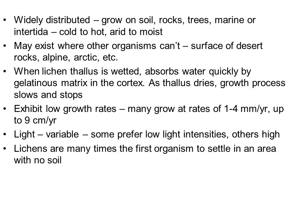 Widely distributed – grow on soil, rocks, trees, marine or intertida – cold to hot, arid to moist