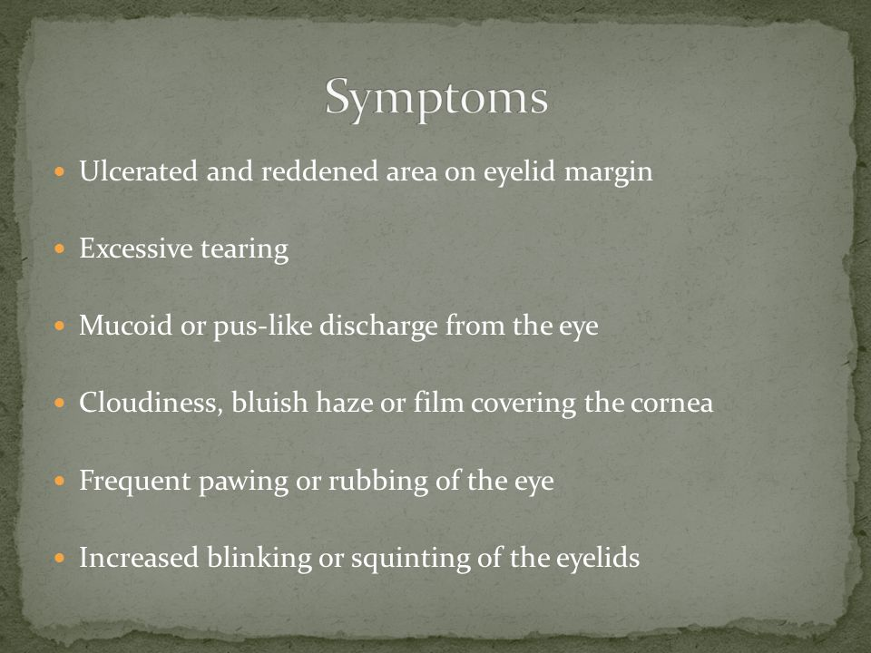 Symptoms Ulcerated and reddened area on eyelid margin