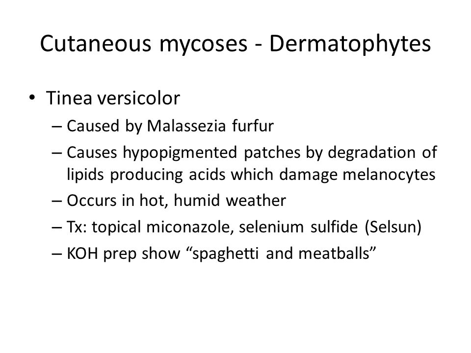 Cutaneous mycoses - Dermatophytes