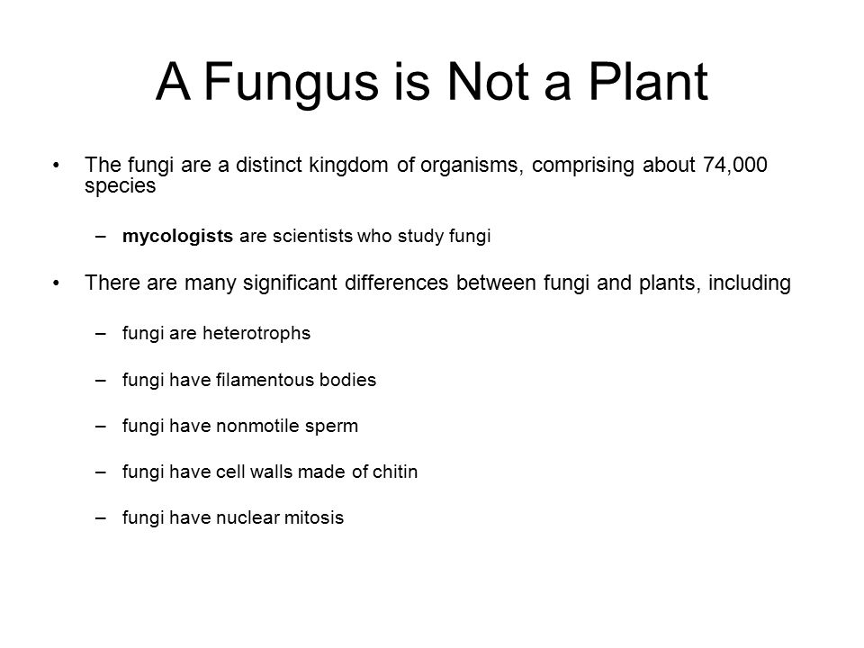 A Fungus is Not a Plant The fungi are a distinct kingdom of organisms, comprising about 74,000 species.