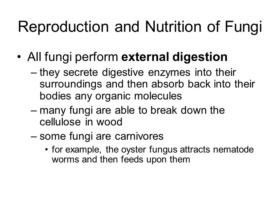 Reproduction and Nutrition of Fungi