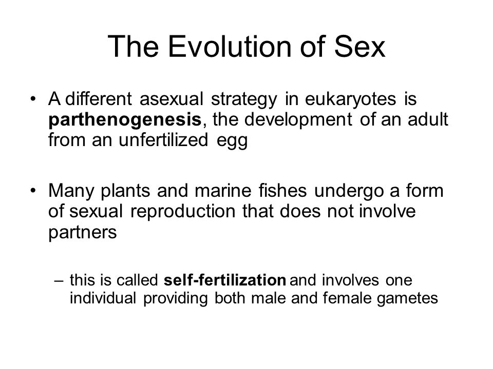 The Evolution of Sex A different asexual strategy in eukaryotes is parthenogenesis, the development of an adult from an unfertilized egg.