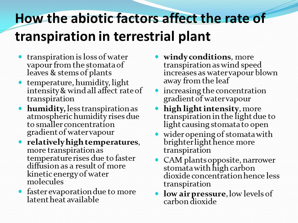 How the abiotic factors affect the rate of transpiration in terrestrial plant
