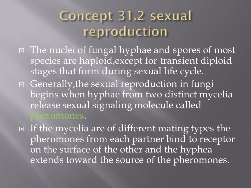 Concept 31.2 sexual reproduction