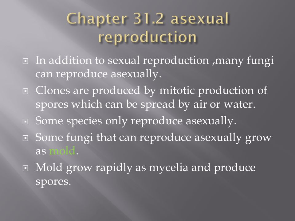 Chapter 31.2 asexual reproduction