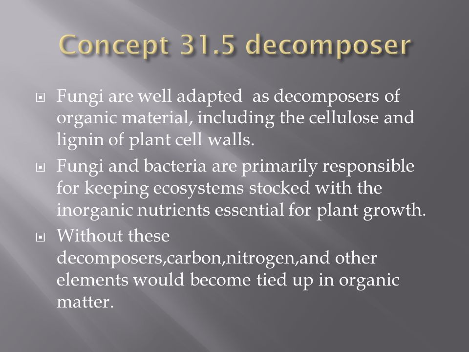 Concept 31.5 decomposer Fungi are well adapted as decomposers of organic material, including the cellulose and lignin of plant cell walls.