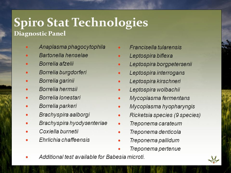 Spiro Stat Technologies Diagnostic Panel