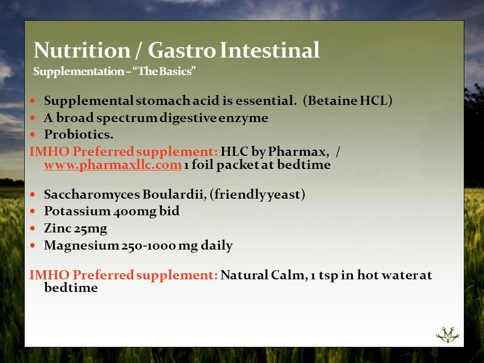 Nutrition / Gastro Intestinal Supplementation – The Basics