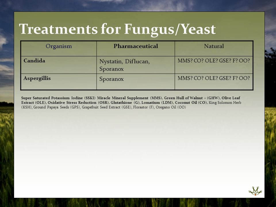 Treatments for Fungus/Yeast