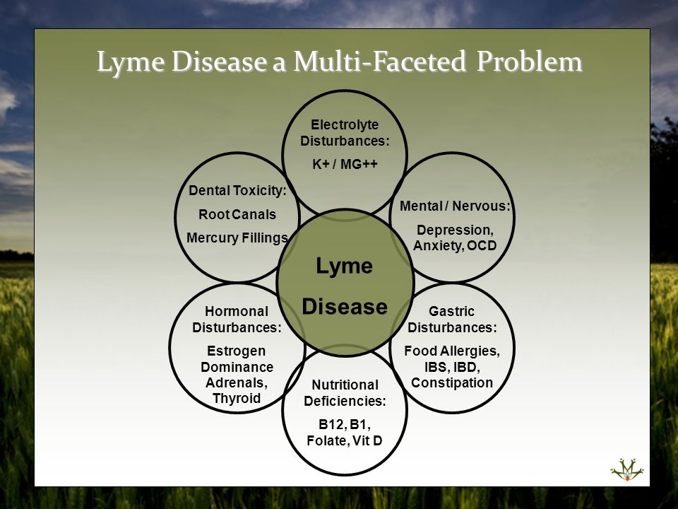 Lyme Disease a Multi-Faceted Problem