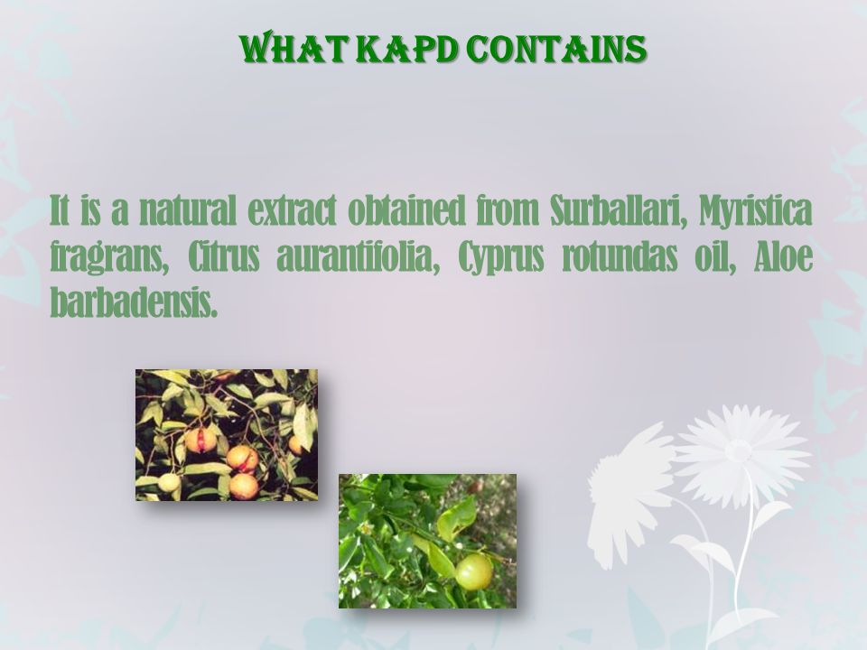 WHAT KAPD CONTAINS It is a natural extract obtained from Surballari, Myristica fragrans, Citrus aurantifolia, Cyprus rotundas oil, Aloe barbadensis.