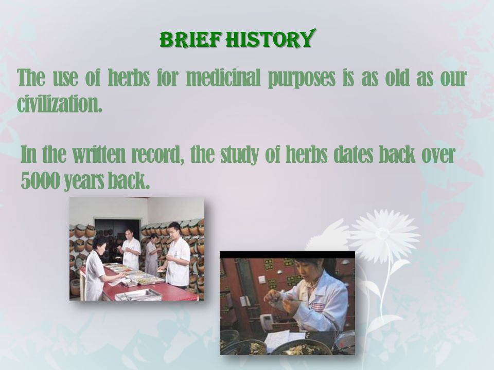 Brief History The use of herbs for medicinal purposes is as old as our civilization.