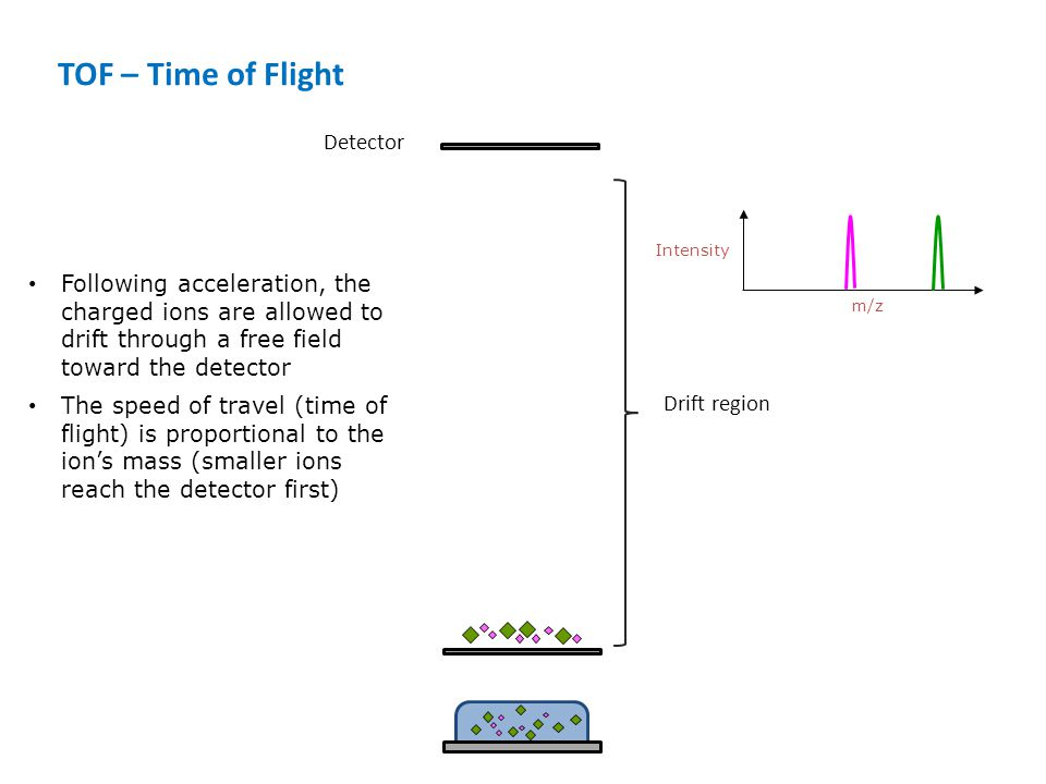 TOF – Time of Flight Detector