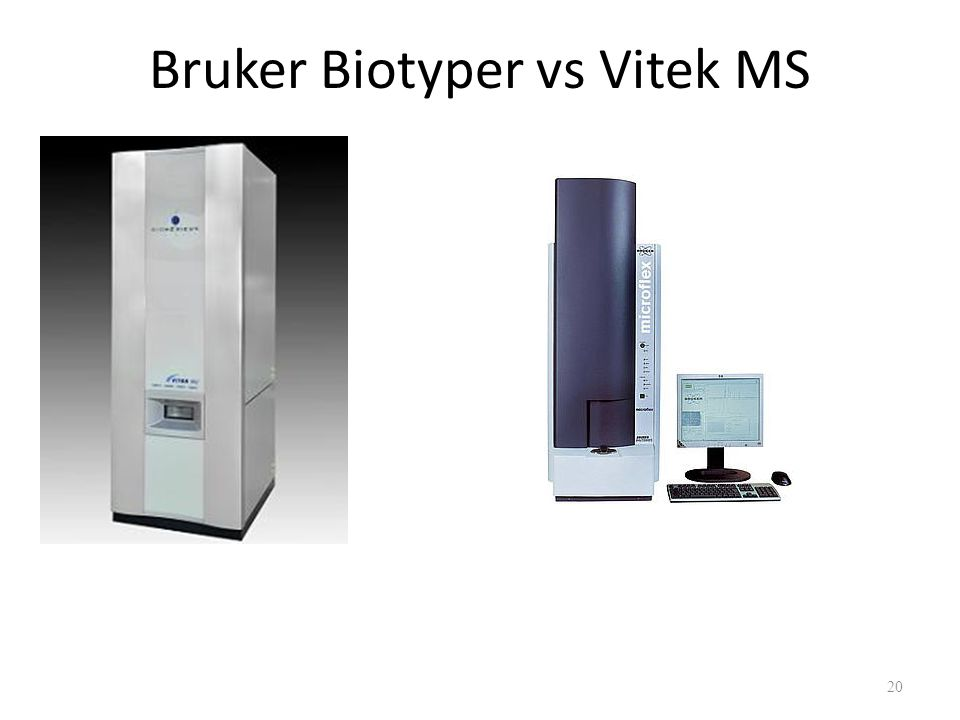 Bruker Biotyper vs Vitek MS