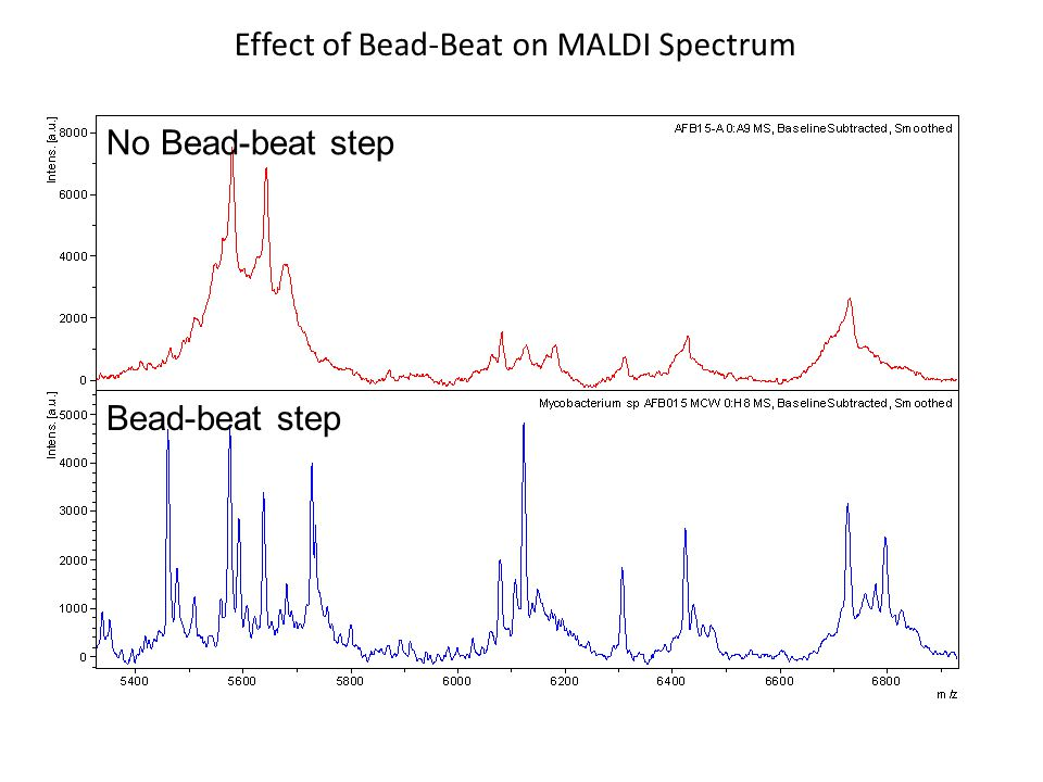 Effect of Bead-Beat on MALDI Spectrum