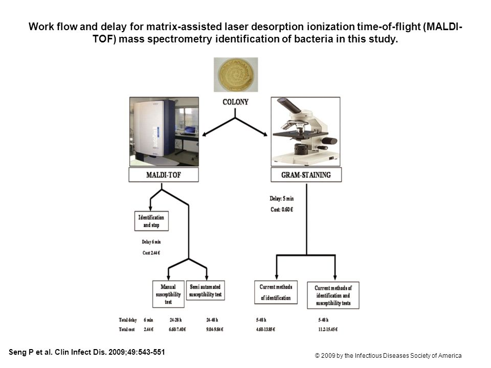 Work flow and delay for matrix-assisted laser desorption ionization time-of-flight (MALDI-TOF) mass spectrometry identification of bacteria in this study.