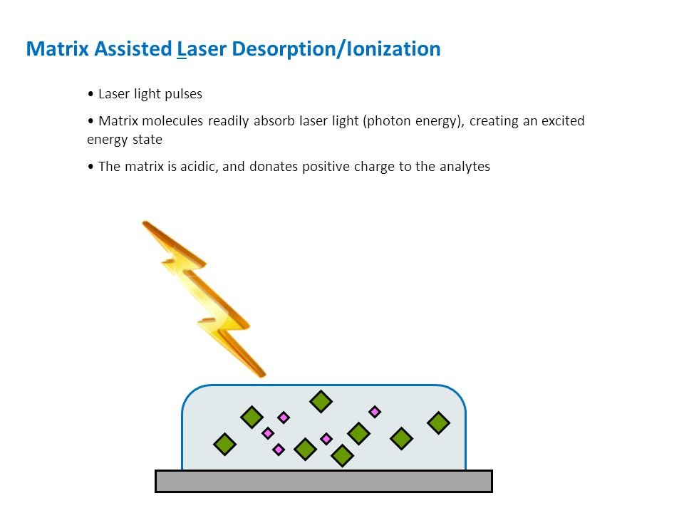 Matrix Assisted Laser Desorption/Ionization