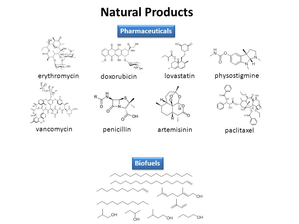 Natural Products Pharmaceuticals erythromycin doxorubicin lovastatin